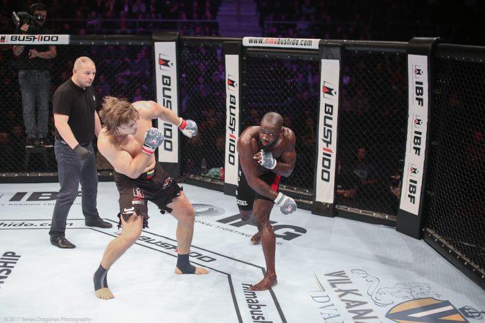 MMA BUSHIDO'72- SAULES MUSIS GALLERY